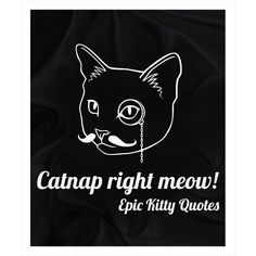 Looking for the purrfect gift? Check out Fleece Sherpa Bla... at http://www.epickittyquotes.com/products/fleece-sherpa-blanket-catnap-right-meow-epic-kitty-quotes-50x60?utm_campaign=social_autopilot&utm_source=pin&utm_medium=pin