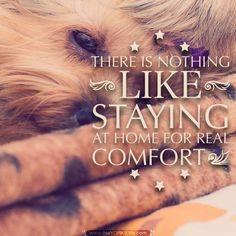 Get it here: http://itsayorkielife.com/stay-home-hug-your-yorkie/