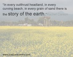 Rachel Carson Quote: Story of the Earth - Postconsumers Save Mother Earth, Earth Day Quotes, Rachel Carson, Grain Of Sand, Save The Planet, Gaia, Evolution, Planets, Survival
