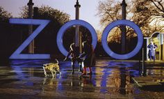 A Zed & Two Noughts(1985)UK   Netherlands__My Rating:6.8 /10__Director:Peter Greenaway__Stars:Brian Deacon、Eric Deacon、Andréa Ferréol