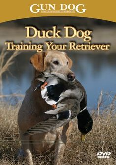 Duck Dog: Training Your Retriever « DogSiteWorld-Store  Its on the list