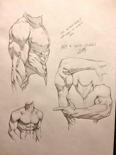 Male arm and torso studies by DefiantArtistry