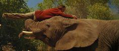 """ROAR"" Documentary Shows ""Tippi Hedren"" Breaking Ankle on an Elephant"