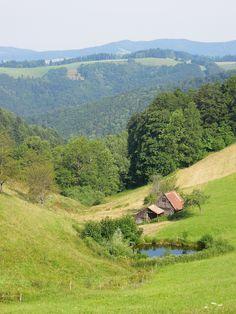 Schwarzwaldblick beim Holzschlägerhof in Breitnau (Baden-Württemberg)