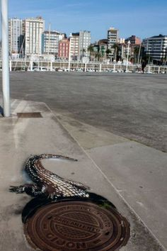 Graffiti Art of the Day  This could be done with a floor graphic as well instead of paint!  www.ssar.com