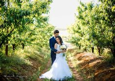 Lovely scenery between the peach orchards, perfect to capture that special moment Orchards, Wedding Venues, Scenery, Peach, In This Moment, Wedding Dresses, Fashion, Wedding Reception Venues, Bridal Dresses