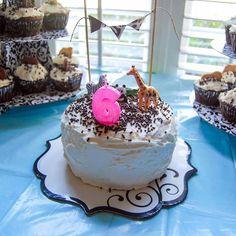 Safari Birthday Cake :) #vegan