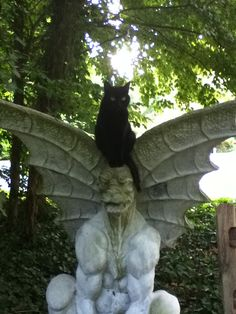 Black cat on a gorgoyle ~ Oh this is so cool!