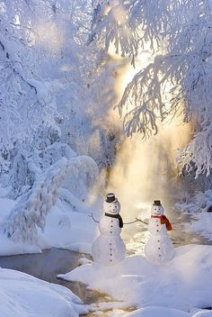 Snow Man One Cold Couple, Alaska / Winter Wonderland Alaska Winter, Winter Szenen, Winter Love, Winter Magic, Winter Christmas, Merry Christmas, Christmas 2014, Christmas Wishes, Winter White