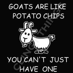 Fact: Goats are like potato chips, you can't have just one!!!!