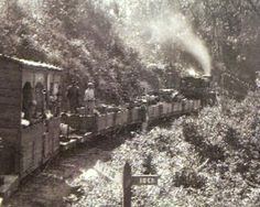 """Knysna's historic """"Coffee Pot"""" train Knysna, Lest We Forget, Back In The Day, Cape Town, Road Trips, Beautiful Gardens, Old Photos, South Africa, Trains"""