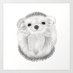 Baby Hedgehog by Veronica Ventress