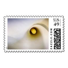 Fully Customizable Calla Lily Flower Postage Stamps - Leave As Is (Pretty Lily Only) or Add Your Own Text, Names, Date, etc. Perfect for Wedding, Bridal Shower, Anniversary, Vow Renewal, Birthday Party, etc.