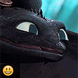 You can see the reflection of Hiccup in his eyes! Well done Dreamworks!