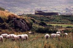 Images of Spirited Ireland - County Kerry - Caherciveen Cahergall Fort