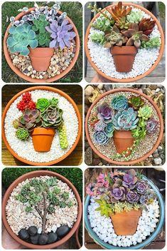 Fairy Garden Pots, Garden Yard Ideas, Garden Projects, Garden Art, Succulent Gardening, Planting Succulents, Succulent Terrarium, Succulent Display, Succulent Centerpieces