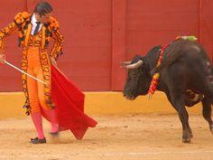 Bullfight fight | San Diego Reader