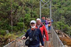 South Africa (251) Tsitsikamma National Park