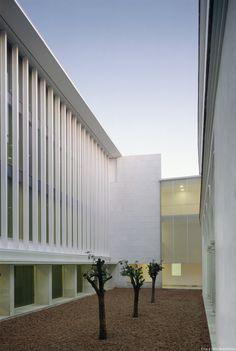 Consejeria-Cultura-Sevilla_Design-exterior-oficinas-patio-narajos_Cruz-y-Ortiz-Arquitectos_DMA_06-X