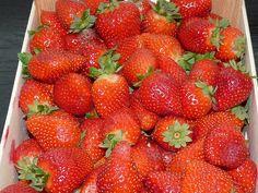 Marmeláda jahodová Strawberry, Fruit, Desserts, Food, Tailgate Desserts, Deserts, Essen, Strawberry Fruit, Postres