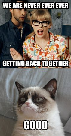 We are never getting back together. Good. -Grumpy Cat Grumpy Cat Quotes, Grumpy Cat Humor, Cat Memes, Memes Chistosisimos, Cute Cats, Funny Cats, Funny Animals, Funny Jokes, Haha Funny