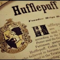 Harry Potter Houses, Harry Potter Theme, Hogwarts Houses, Harry Potter World, Hogwarts Mystery, Harry Potter Books, Ravenclaw, Hufflepuff Pride, Welcome To Hogwarts