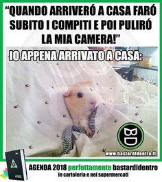 #bastardidentro #perfettamentebastardidentro www.bastardidentro.it