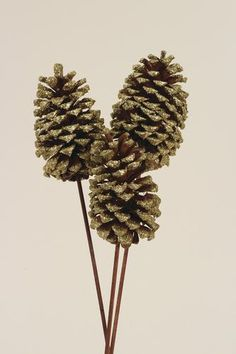 3325ef529d8ee Enchanted Forest® Jumbo Pinecone Trio - Assorted Styles  5