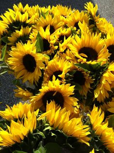 I don't care for flowers, but Sunflowers always make me smile (:
