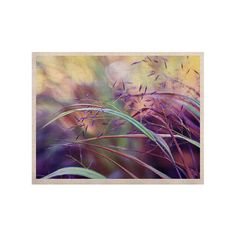"Sylvia Cook ""Pretty Grasses"" KESS Naturals Canvas (Frame not Included) 