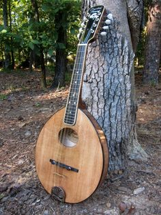Build your own gibson f5 mandolin kit you cant call it a gibson an army navy style mandolin with an oval hole a replica of the mandolins sold solutioingenieria Image collections