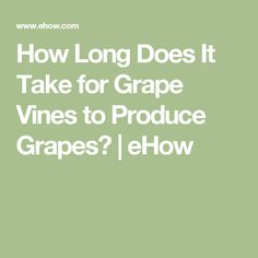 How Long Does It Take for Grape Vines to Produce Grapes? | eHow
