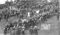 Barnet Fair (London's oldest horse fair) - Hair Rhyming Slang Vintage London, Old London, North London, Old Photos, Vintage Photos, Rhyming Slang, Teaching Aids, Barnet, Hands On Activities