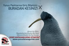 Cut here: Your ticket to dolphinariums!  Every ticket you buy removes a walrus from the ocean and two tusks from the walrus. What is left in hand is a tuskless captive walrus turned into a muppet! Do not go to dolphin parks! | www.yunuslaraozgurluk.com