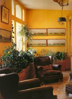 Would love to use this saffron/canary yellow somewhere - not necessarily as a wall paint.