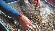 Blott Kerr-Wilson shell art
