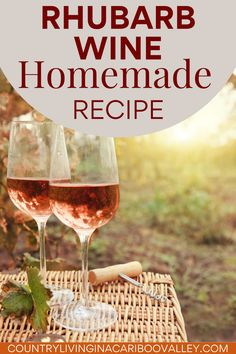 Make homemade Rhubarb wine with this easy recipe. Perfect for cocktails or sangria, this DIY recipe can be made in a small batch or 5 gallon jugs.
