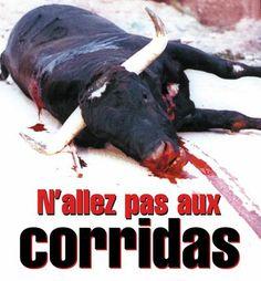 Anti #corrida et si vous y allez ne vous dites pas amis des animaux, humains, intellectuels, pacifique! Mais plutôt barbares sanguinaires et cruels !! Tout comme les ss autrefois!!!