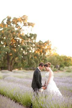 Praying on lavender field