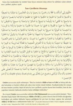 Doa Islam, Allah Islam, Islam Quran, Islamic Phrases, Islamic Dua, Dua In Urdu, Quran Pak, Allah Names, Islamic Love Quotes