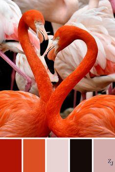 ZJ Colour Palette 613 #colourpalette #colourinspiration