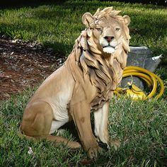 KING-OF-BEASTS-LION-DESIGN-TOSCANO-Lion-wild-animals-lion-statue-zoo-african