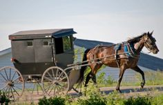 jamesport-missouri-amish-carriage
