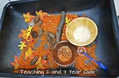 "Fall sensory bin: dried corn kernels, mini pumpkins, mini maize, pinecones, nuts in the shell and half shells, sticks, fake leaves, rocks... mini construction trucks and tongs for ""cranes"" are fun too!"