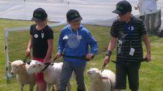 Teamwork Teamwork, Country Living, Dogs, Animals, Country Life, Animales, Animaux, Pet Dogs, Doggies