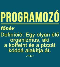 Programozó