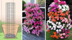 Easy To Make Petunia Tower That Will Get Your Neighbours Talking - YouTube