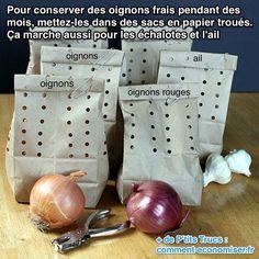 Comment conserver les oignons frais plus longtemps (faire des trous à la perforatrice en pliant le sac de papier kraft) - ne pas sérer trop les sacs entre eux : l'air doit circuler