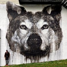 """""""The Grey Wolf"""" by Jussi TwoSeven in Oslo, Norway, 10/17 (LP)"""