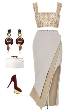 CHARLOTTE by ruhan-victor on Polyvore featuring polyvore fashion style Oscar de la Renta Maticevski Charlotte Olympia Marni clothing